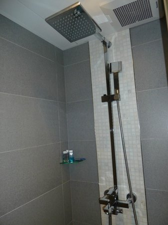 Hotel LBP: Rainwater shower head