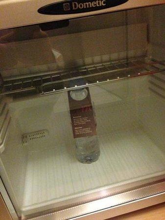 Mercure Paris Porte de Versailles Vaugirard:                   la tristezza del frigobar :(                 