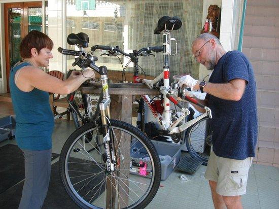 Bike World Bed, Breakfast & Bike:                   Putting our bikes together in the yard.