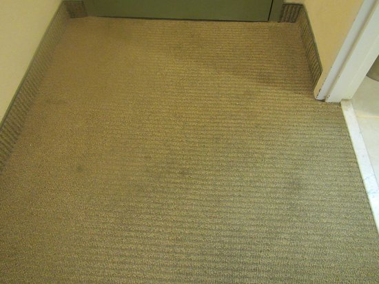 Hampton Inn & Suites San Juan :                   Stained dirty carpet throughout