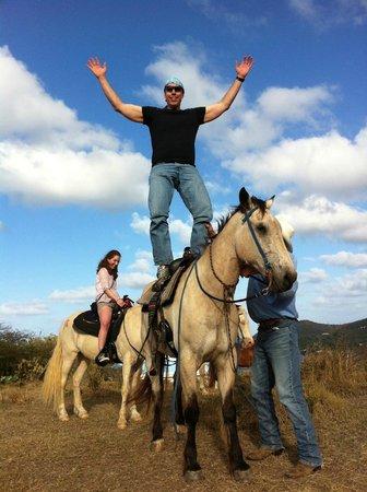 Equus Rides:                                                                                           I can'