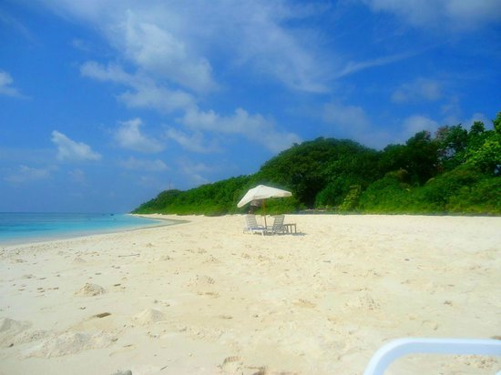 Coral Reef View Inn:                   The beach