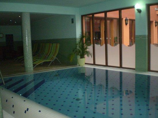 Hotel Majolika :                   pool