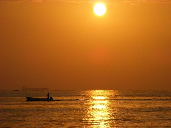 Hilton Fujairah Resort: Beach