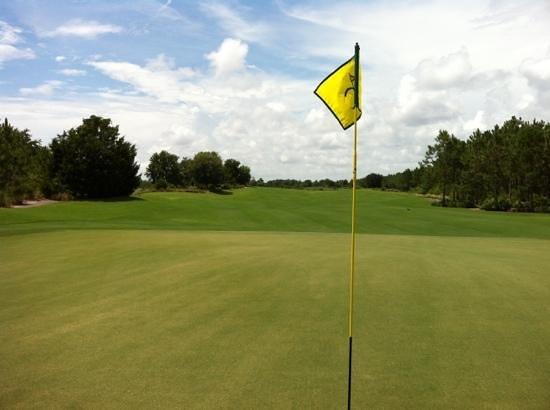 Camp Creek Golf Club :                   prefect greens