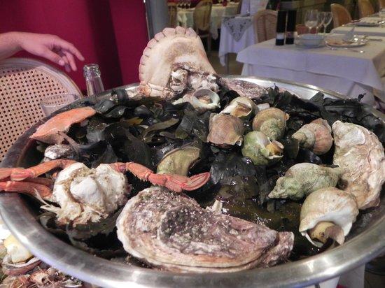 La Regence :                   plateau de fruits de mer