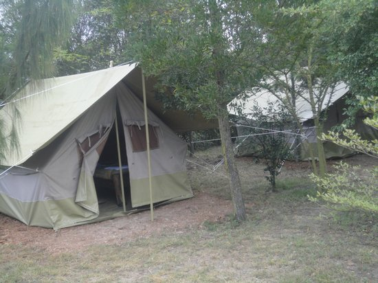 Moof Africa Organic Hostel / Camp: Moof Africa  Mosquito free Tented Camp