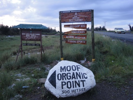 Moof Africa Organic Hostel / Camp: Getting Here at MOOF.AFRICA