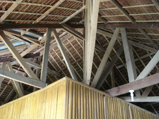 Bura-akay Nature Resort:                   Interesting roof!
