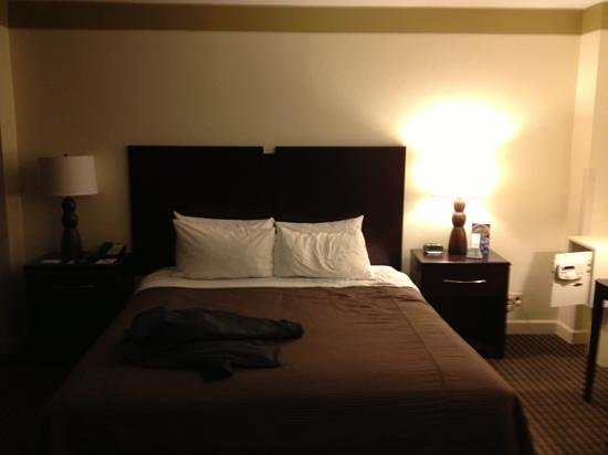 Best Western River North Hotel:                   bedroom