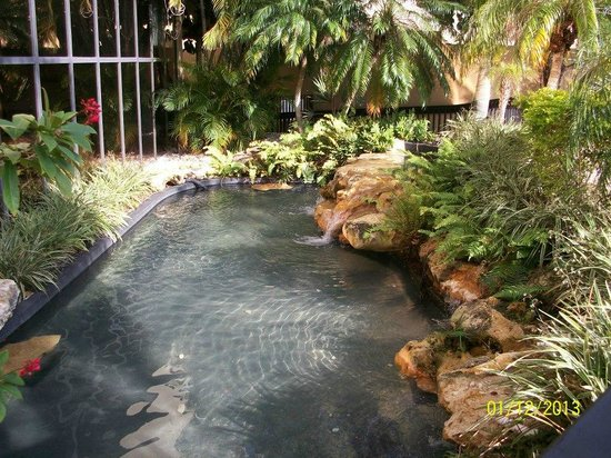 DoubleTree by Hilton Hotel Miami Airport & Convention Center:                                     lovely pond leading into the pool area