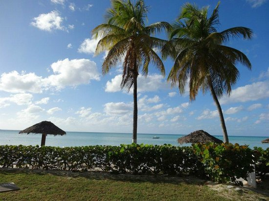 هالكيون كوف باي ريكس ريزورتس (شامل جميع الخدمات):                   View from our terrace - oceanfront room WOW!!                 