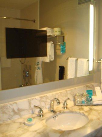 The Donatello:                   TV in bathroom mirror, VERY COOL