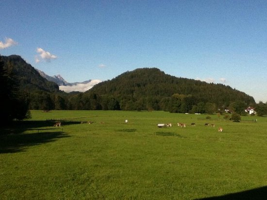 Alpenhotel Allgaeu:                   view from our room