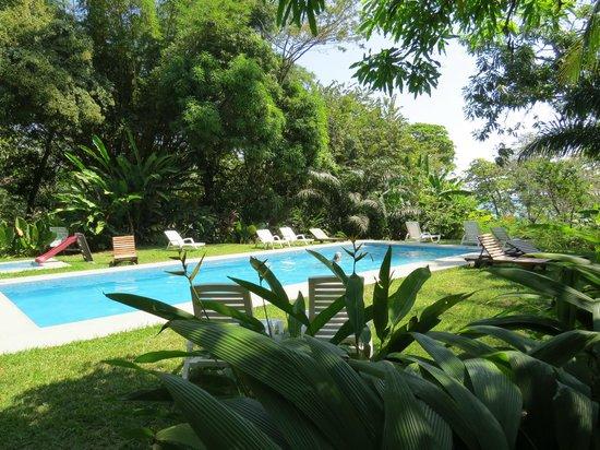 Hotel Luz de Mono:                   The Pool