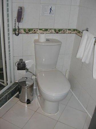 Island Garden Resort:                                     good solid toilet