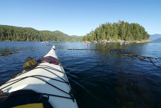 Spirit of the West Adventures:                   KAYAKING IN JOHNSTONE STRAIT WITH SPIRIT OF THE WEST
