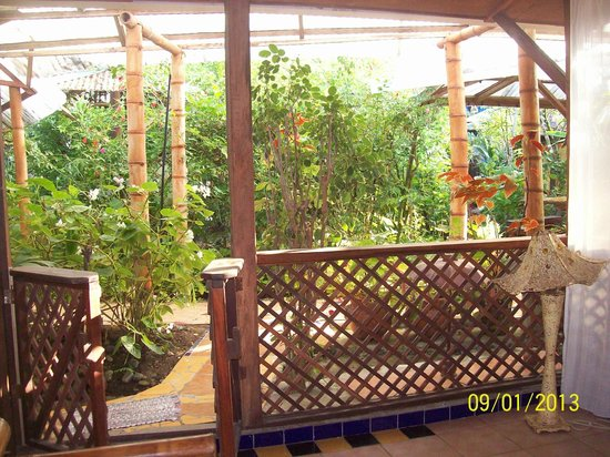 Jacaranda Hotel and Jungle Garden :                   Vista del Jardin