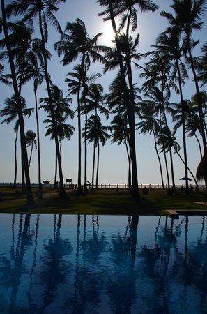 รีฟ วิลล่า & สปา:                   View from the pool