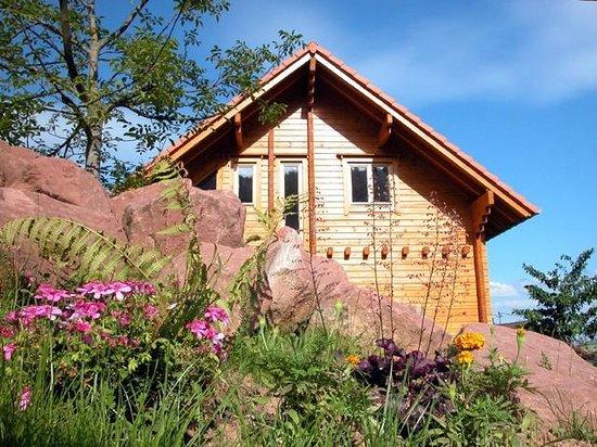 Haegen, France: La maison du BoisDoré