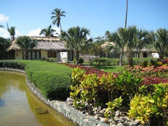 Zoetry Agua Punta Cana:                   les jardins contribuent eux aussi au calme