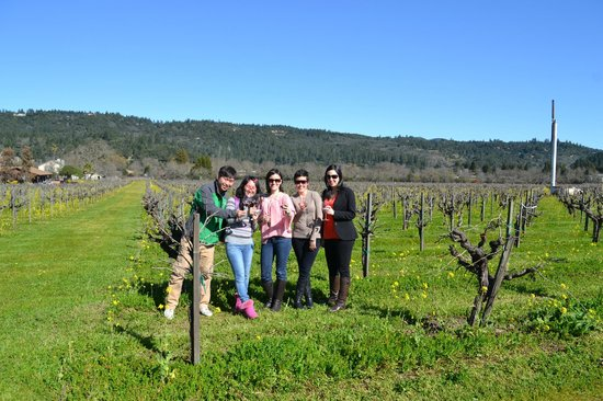 Platypus Wine Tours:                   At David Fulton Winery!