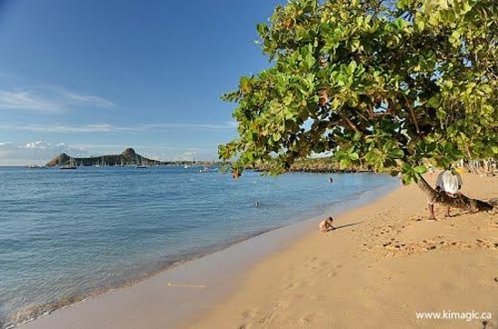 Reduit Beach St Lucia 2018 All You Need To Know Before Go With Photos Tripadvisor