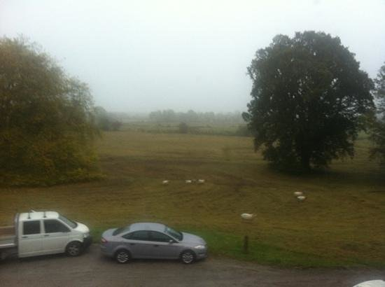 Ballinderry Park:                   The view through the bedroom windows, first thing in the morning.