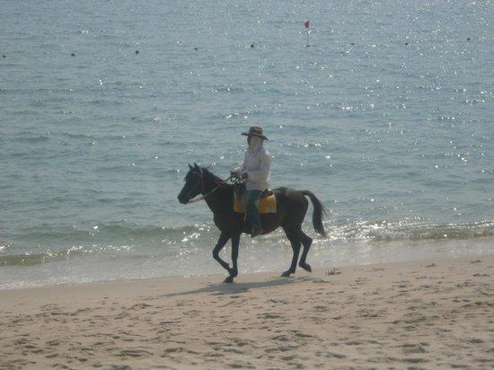 Regent Chalet Regent Beach Cha-Am: Zorro????