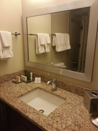 Hilton Grand Vacations on Paradise (Convention Center): bathroom