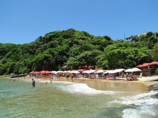 Joao Fernandinho Beach:                   Vista de la playa