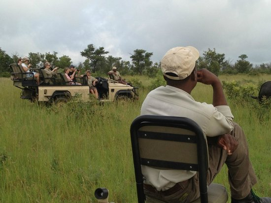 Ulusaba Private Game Lodge:                                                       Land Rovers out on Game Drive