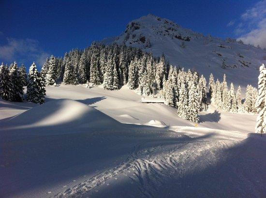 Mont Blanc Alpine Estate:                   Bij een van de vele skipistes
