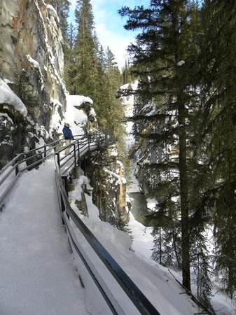 Banff Rocky Mountain Resort: Johnston Canyon on the Bow Valley Pkwy