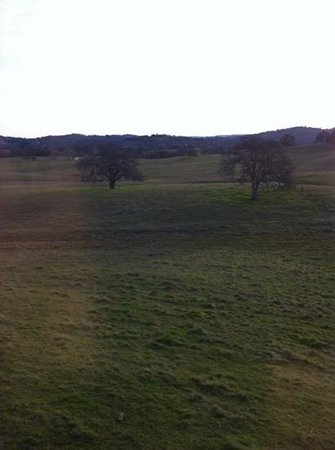 Shenandoah Inn :                   View from our room.