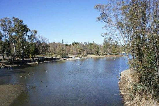 Vasona Lake County Park:                   лодочная станция