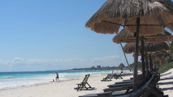 La Vita e Bella:                                     La Vita's room-assigned beach chairs- this a far more relaxi