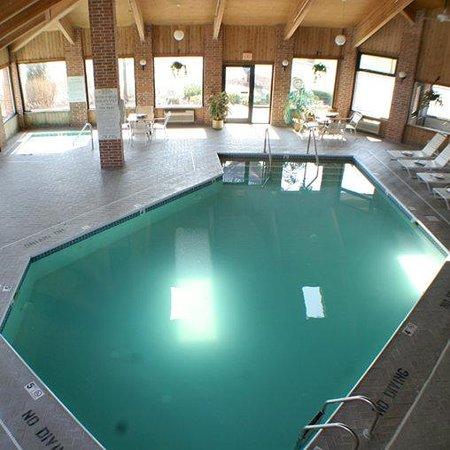 American Inn & Suites Ionia: Pool Ionia