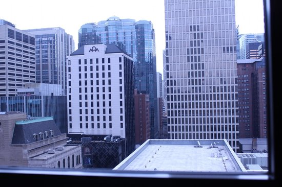 The James Chicago-Magnificent Mile:                   Picture of the skyline out of our window