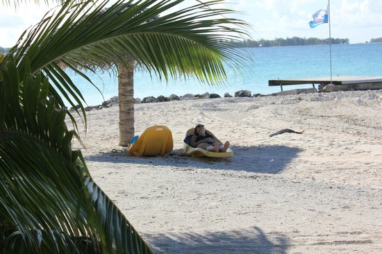 Pension Hotu:                                     The beach just outside the bungalows