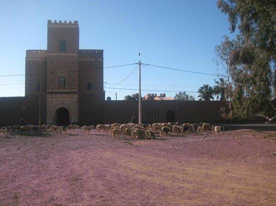 Kenzi Club Agdal Medina: une kasbah