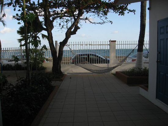 Tres Palmas Inn:                   Hammocks in front yard