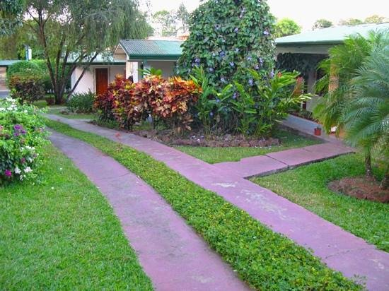 Hotel La Rosa de America:                                                       path to our cabinas