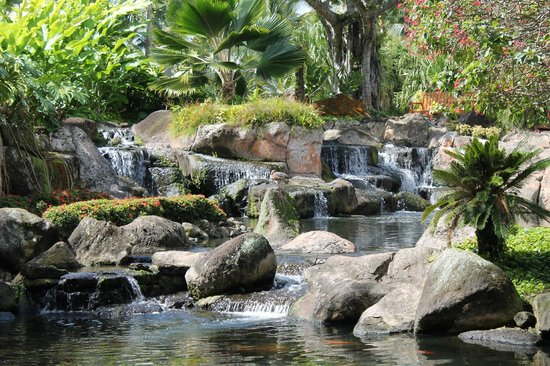 Kaua'i Marriott Resort:                   grounds