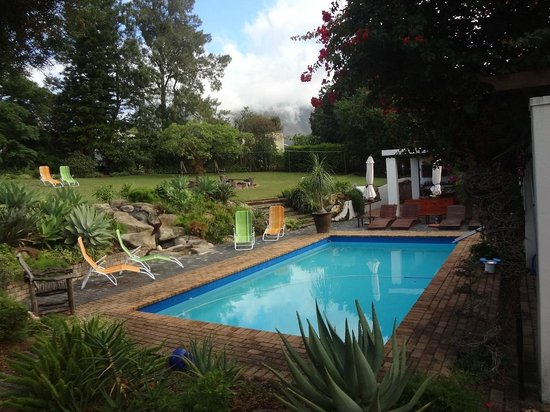 Marula Lodge Guesthouse: THE POOL