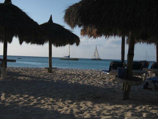 Hilton Aruba Caribbean Resort & Casino:                   Radisson Palaps and Beach                 