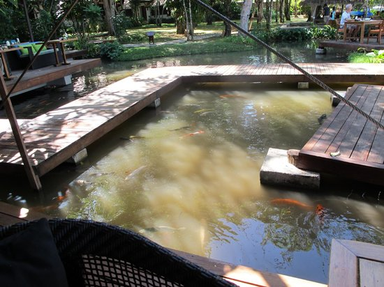 The Tubkaak Krabi Boutique Resort:                   Walkway to restaurant