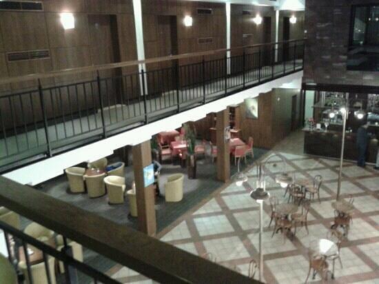 Daugirdas Hotel:                   Холл