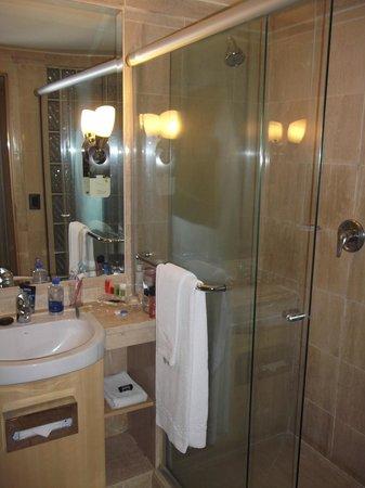 Pullman Sao Paulo Ibirapuera:                   banheiro