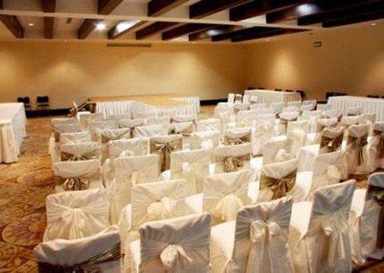 Quality Inn & Suites Saltillo Eurotel: Meeting Room